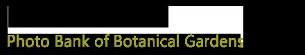 植物影像数据库